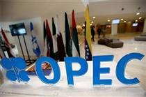 دیدگاههای مثبت اعضای اوپک، از نوسانات قیمت نفت جلوگیری کرد