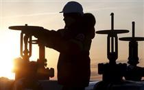 تمایل ایران به مشارکت شرکتهای ترکیه ای در پروژه های نفتی
