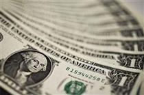 ارزش دلار در برابر ارزهای اصلی جهان رکورد زد