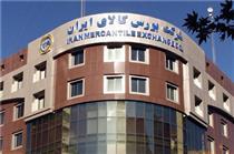 معامله ۳۷۴ هزار تن انواع محصول در بورس کالای ایران