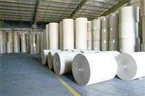 خامفروشی ۲۰۰ هزار تن کاغذ در سال گذشته