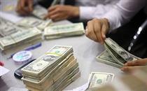 بازار ارز در کمای خرید و فروش