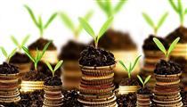 سال ۹۷ در کدام بازار سرمایهگذاری کنیم؟