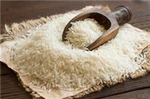 گشایش نماد معاملاتی گواهی سپرده برنج طارم مازندران در بورس کالا