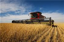 معافیت محصولات کشاورزی از بازگشت ارز صادراتی گام مجلس برای رونق تولید