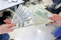 تک نرخی شدن ارز باعث لطمه در سرمایه گذاری!