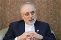 ایران در طول برجام ۲۴ تن اورانیوم را غنیسازی کرد