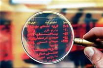 تعیین دستوری قیمتها در بورس پایدار نمیماند