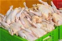 قیمت مرغ سقف ۲۰ هزار تومان را زد